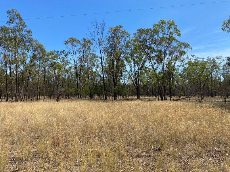 150 Acre Bush Block