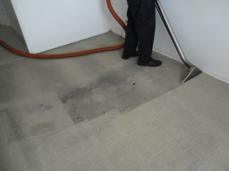 Protec Carpet & Blind Cleaning & Repairs - Massive Growth Potential