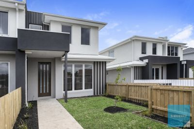 Smart start with this sensational investment