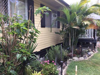 Tropical retreat  Lifestyle plus