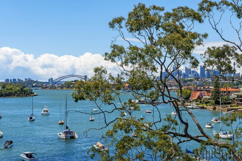 Harbourfront Magic, Panoramic Views