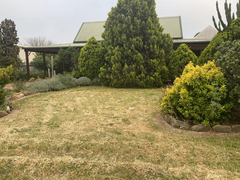Private Rentals: Lot 147 Whiteley Street, Dunedoo, NSW 2844