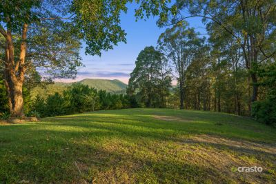 Vacant Land with Privacy & Stunning Hinterland Views