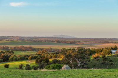 Rare Opportunity - Same Family Ownership Since 1967 - 36 Ha (89 acres approx)