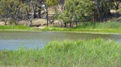 River Glen Park   32.12ha 79.3 acres approx.