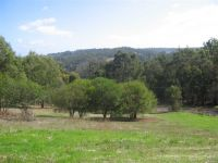 1.5 ACRE TOWN BLOCK REDUCED FOR FAST SALE!!!!