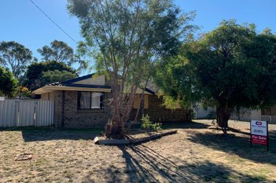 8 Whitley Place, Withers,