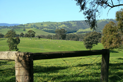 Live the Fabulous Small Town Victorian Lifestyle with Beautiful bush location
