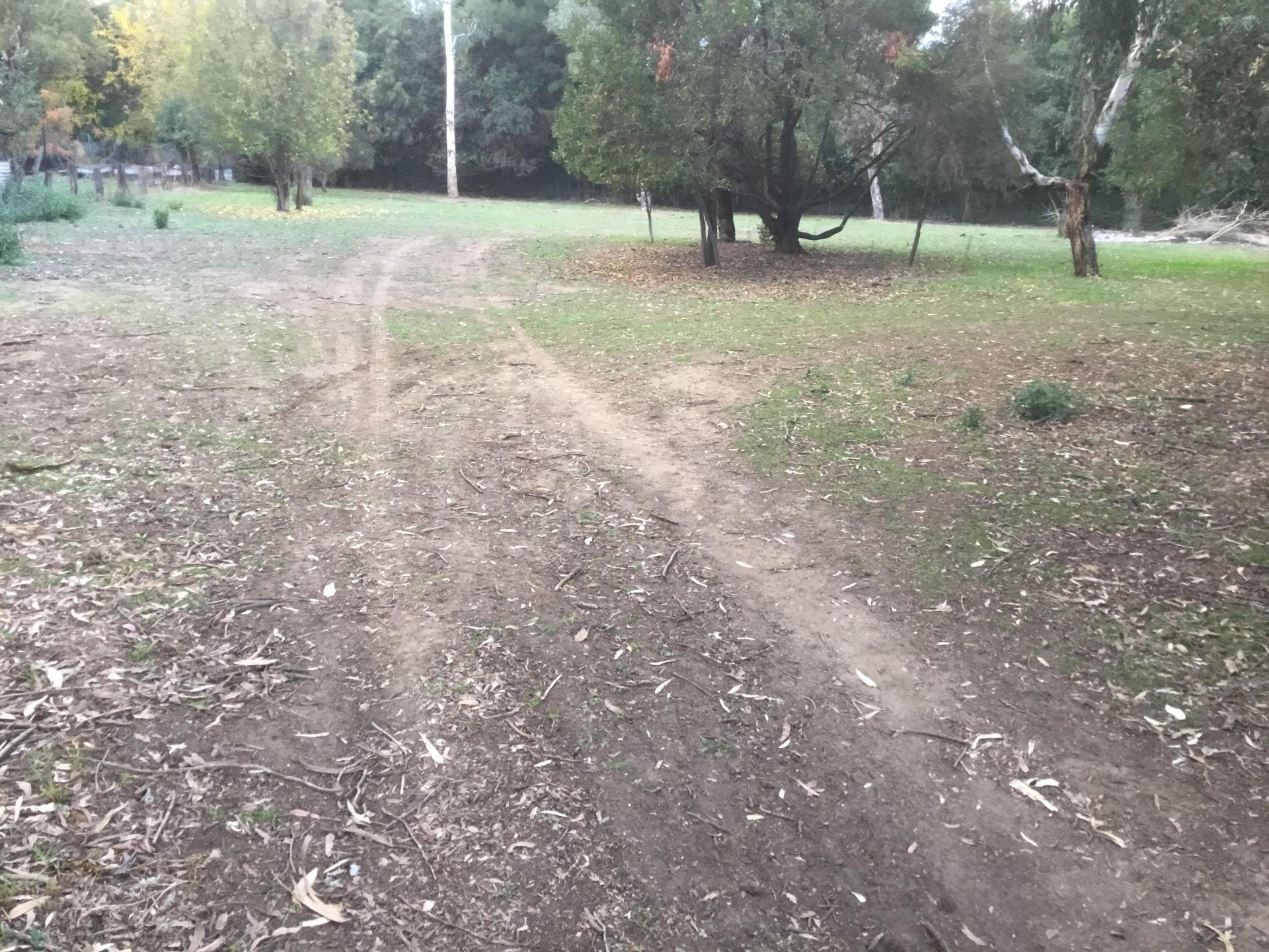 WOOLOMIN, NSW 2340