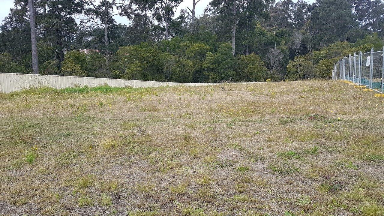 Lot 433 Timbertown Estate, WAUCHOPE NSW 2446