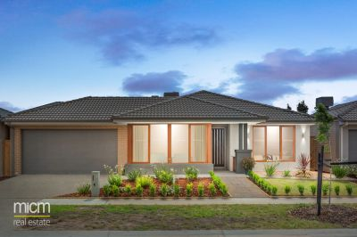 Exceptional Family Living with Bondi on Parade!