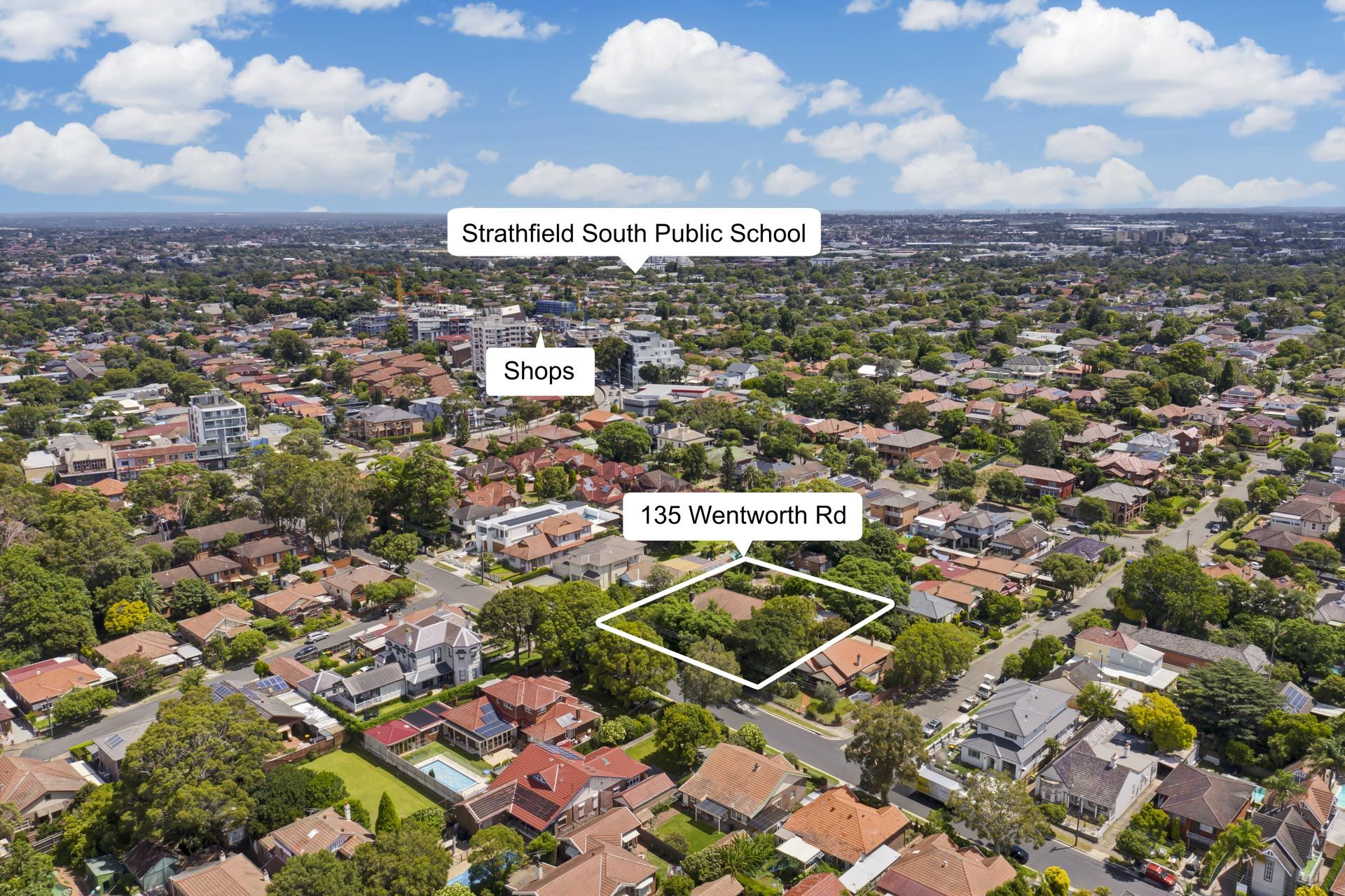 135 Wentworth Road, Strathfield NSW 2135