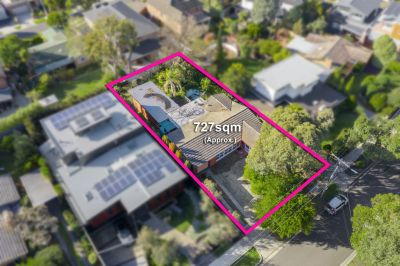 3 Toolang Court, Mount Waverley