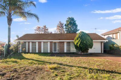 21 Keighran Place, Minto, NSW