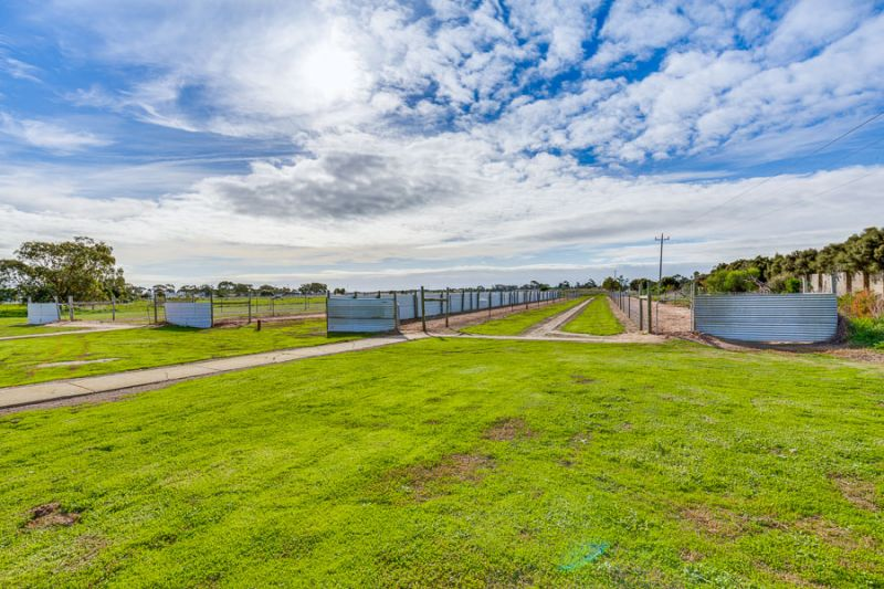 Greyhound Properties For Sale Vic
