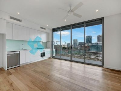 BRAND NEW TOP FLOOR APARTMENT IN SURRY HILLS NEWEST DEVELOPMENT OPEN FOR INSPECTION:  BY APPOINTMENT