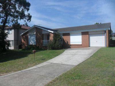3 Nigel Place, Macquarie Fields, NSW
