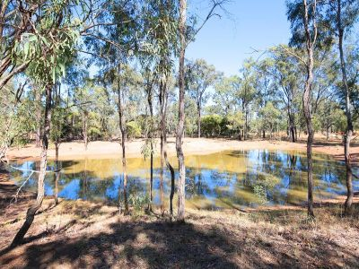 OPPORTUNITY NOT TO BE MISSED - 43 ACRE PROPERTY