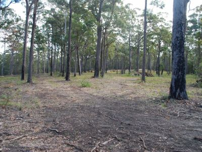 Lot 244 Millingandi Ridge Road, Millingandi