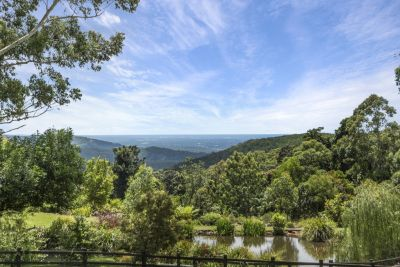 Mountain acreage has it all!