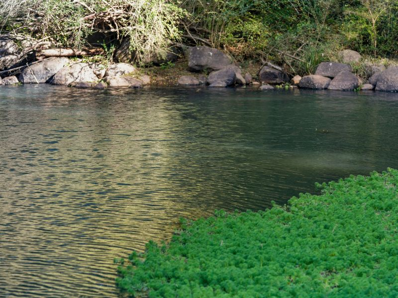 Views, Swimming Holes - A Great Investment