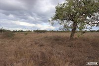 VACANT RURAL LAND 34.17 ACRES
