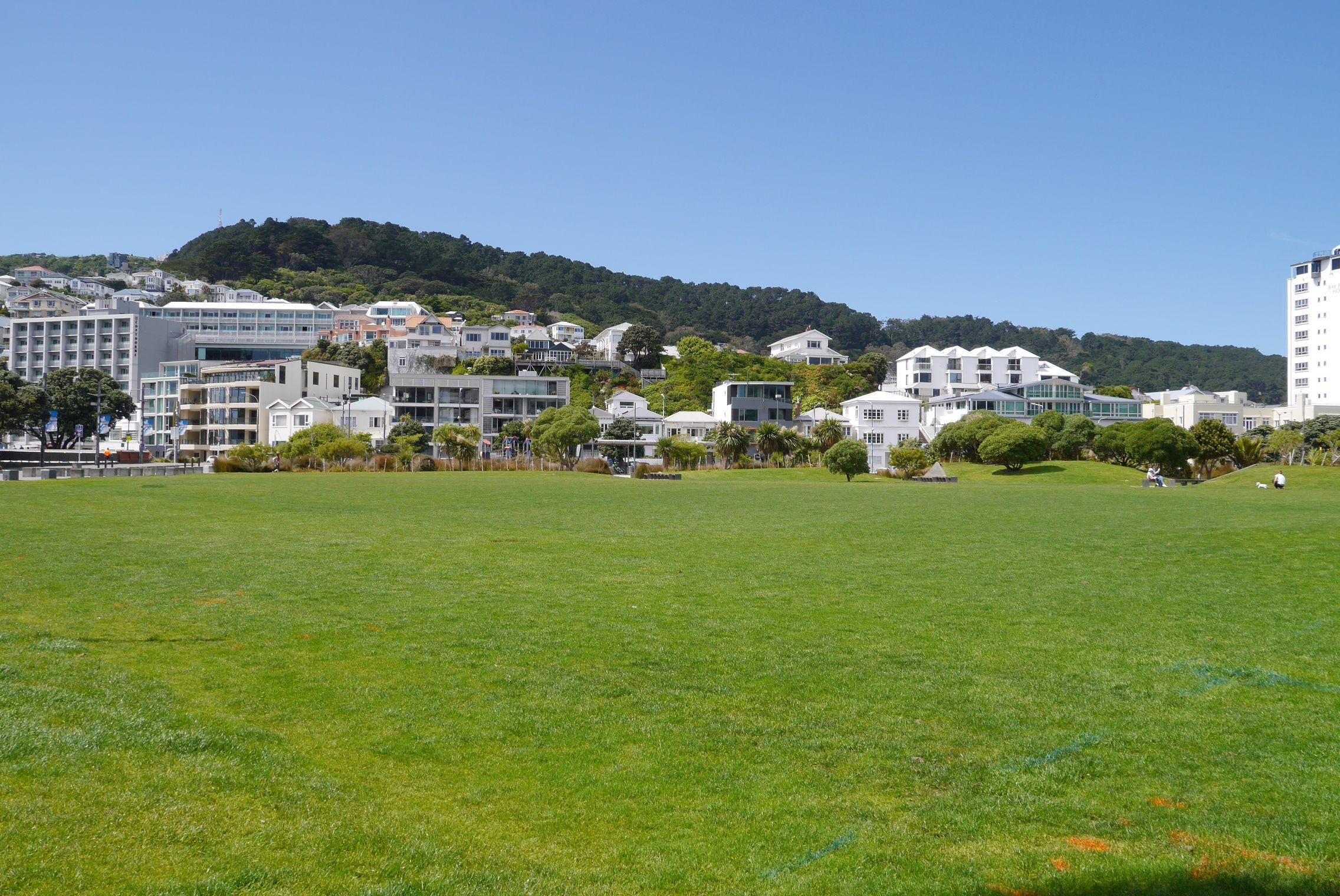 5/18 Herd Street, Wellington Central