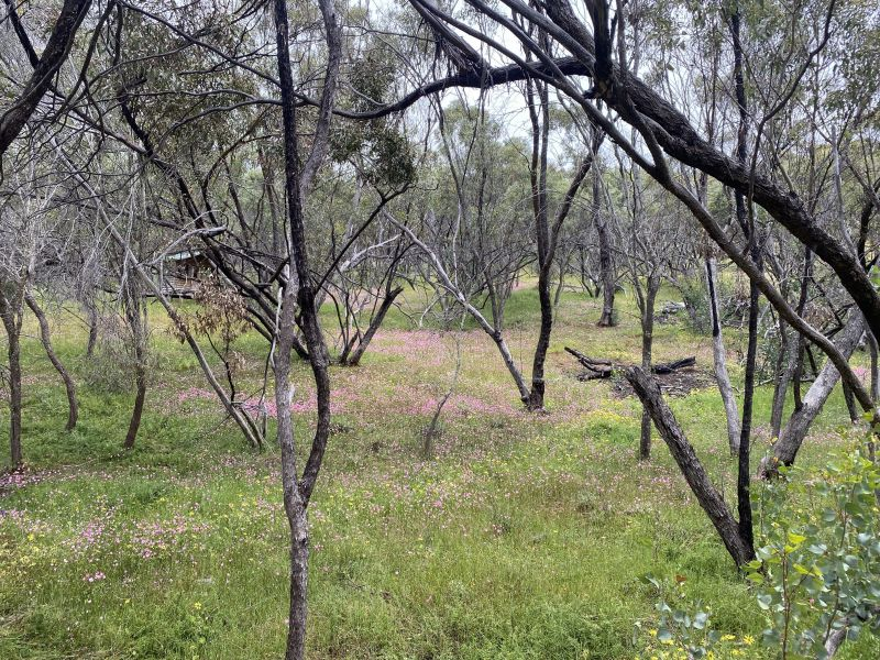 For Sale By Owner: 110 Horseshoe Road, Coondle, WA 6566