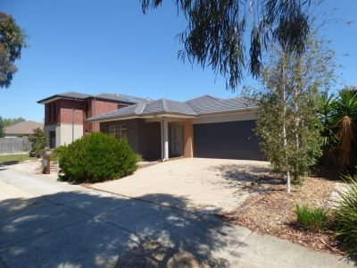 FIRST CLASS TENANT WANTED! Beautiful Alamanda Estate Family Home!