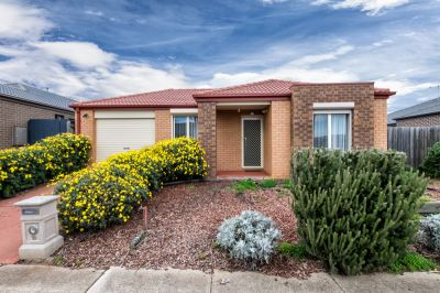 Immaculately Kept Family Home!