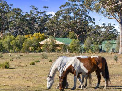 10746 Tasman Highway, Little Swanport