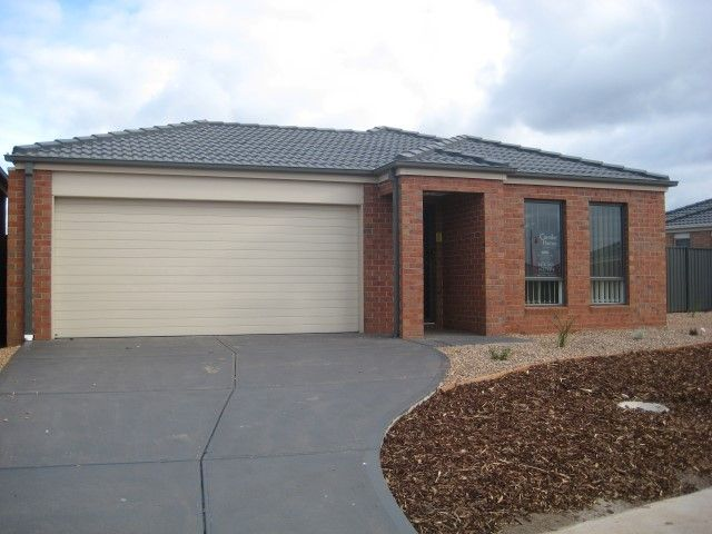 FIRST CLASS TENANT WANTED! Great Choice for Family!