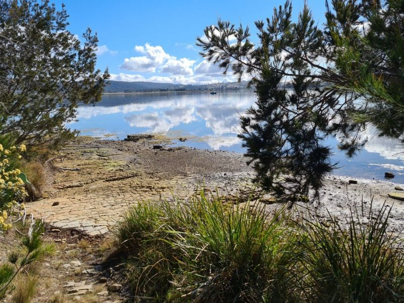 For Sale By Owner: 51 Barton Ave, Triabunna, TAS 7190
