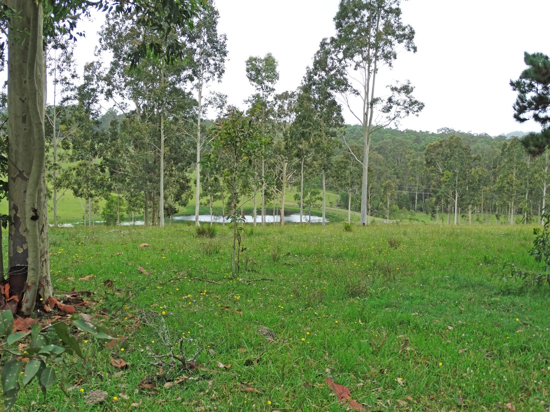 Lot 3 Booral Road GIRVAN 2425