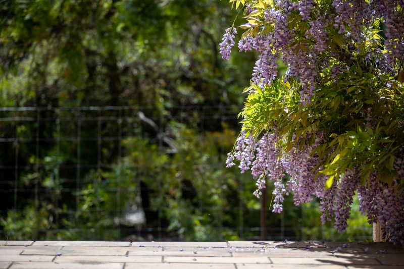 Delightful Gardener's Oasis on 13.8 acres