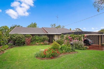 Great Family Home In the top End Of Rangeville!