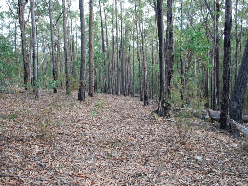Lot 43 Red Gum Road, Yellow Pinch