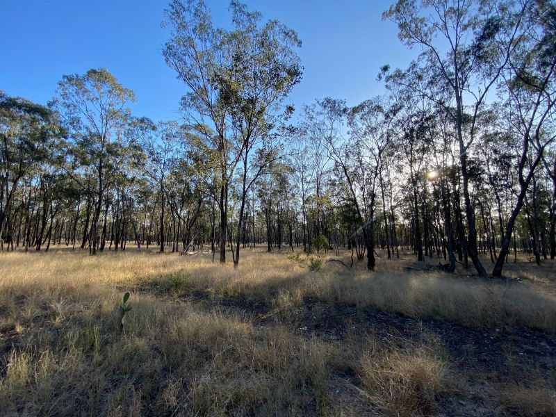 100+ Acres with bitumen frontage