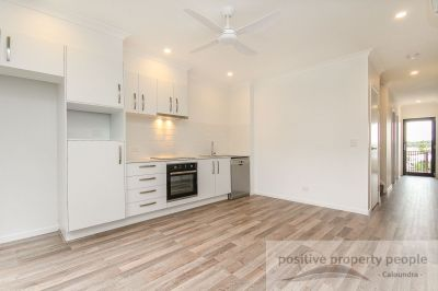 Brand New, Low Maintenance Terrace Home