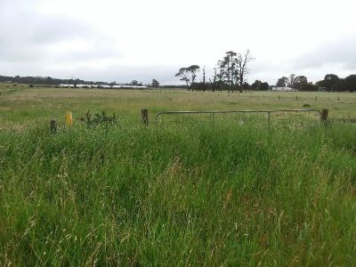 Lot 1 on PS 531436Y Redesdale Road, Kyneton 3444