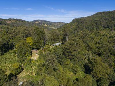 399 Bishops Creek Road, Coffee Camp