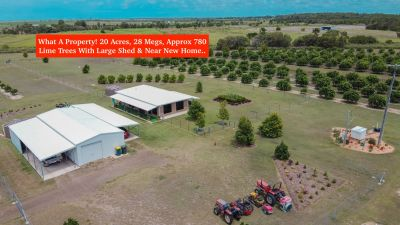 20 ACRE FARM WITH 28MEGS BETWEEN TOWN & COAST! HUGE SHED & QUALITY HOME…