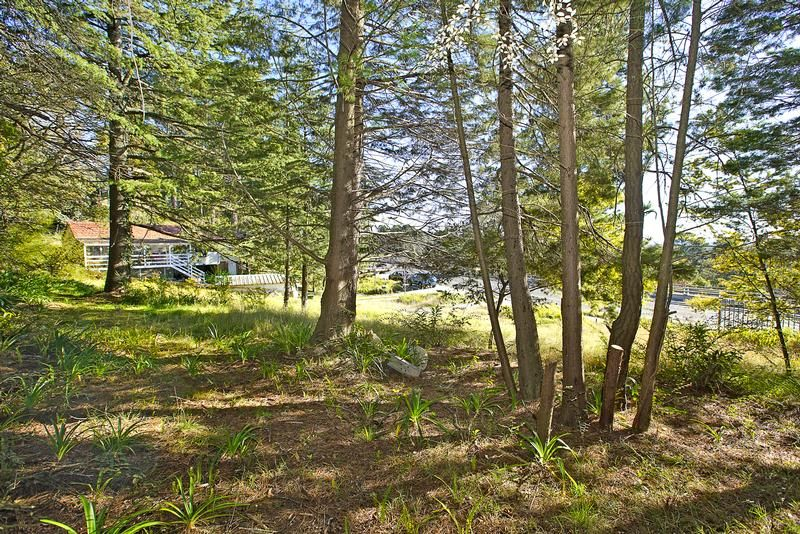 116 Great Western Highway Wentworth Falls 2782