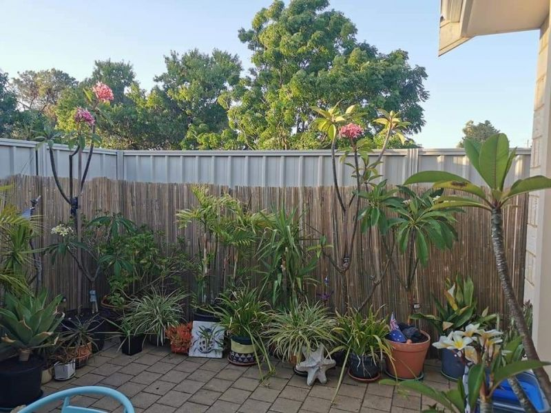 Private Rentals: 13 Mayfield Street, Westminster, WA 6061