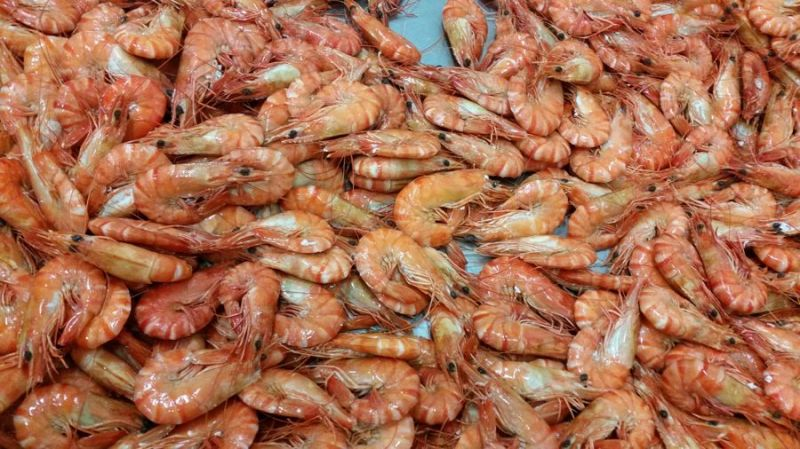 You'll always be sure of a substantial income from this freehold prawn farm.