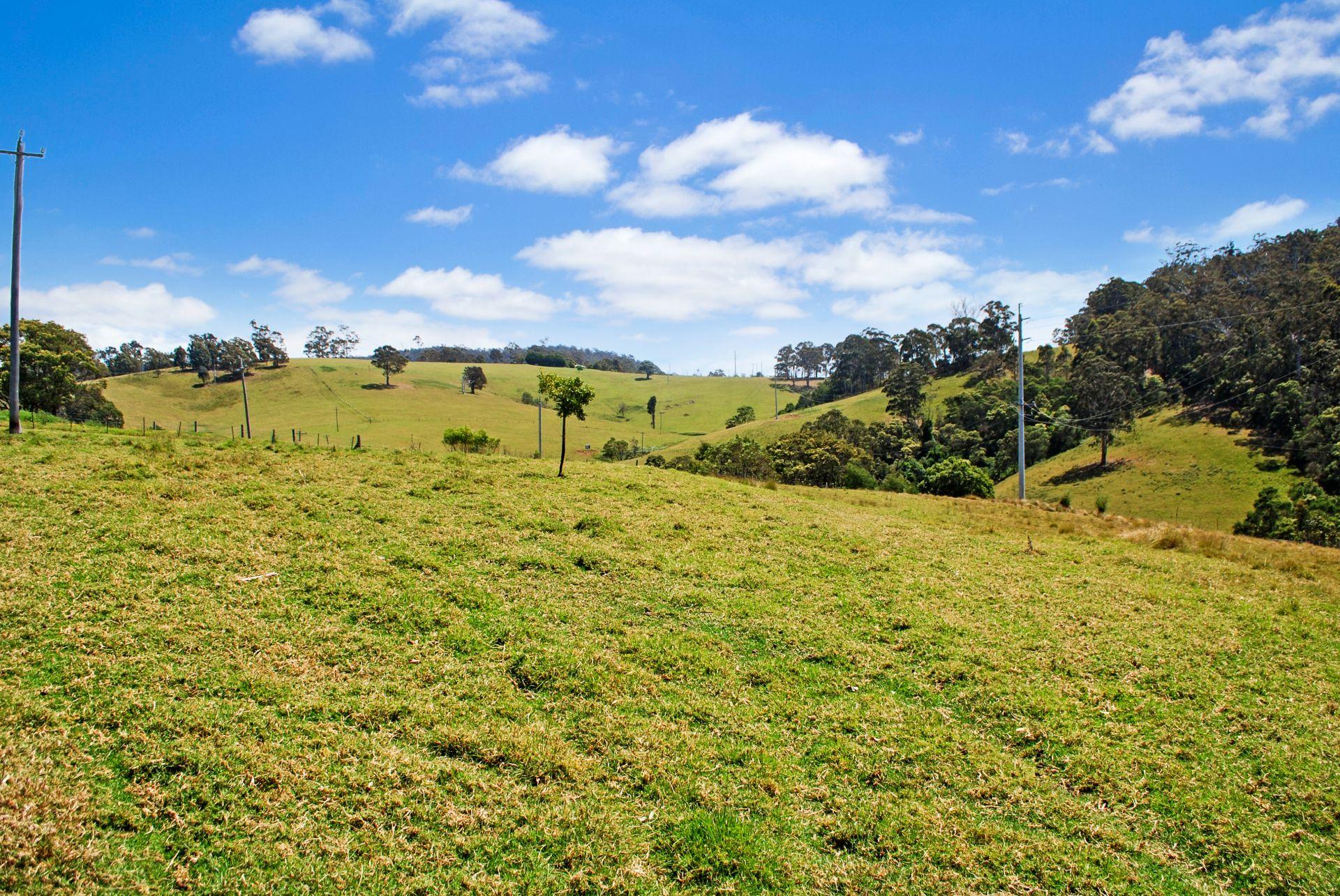232 Bald Hills Road, Bald Hills