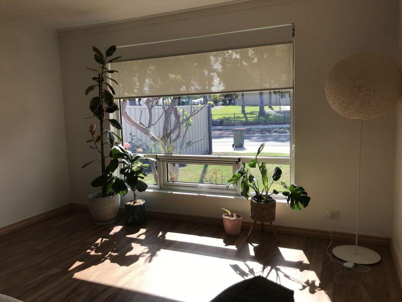 Private Rentals: 640B North Beach Road, Gwelup, WA 6018