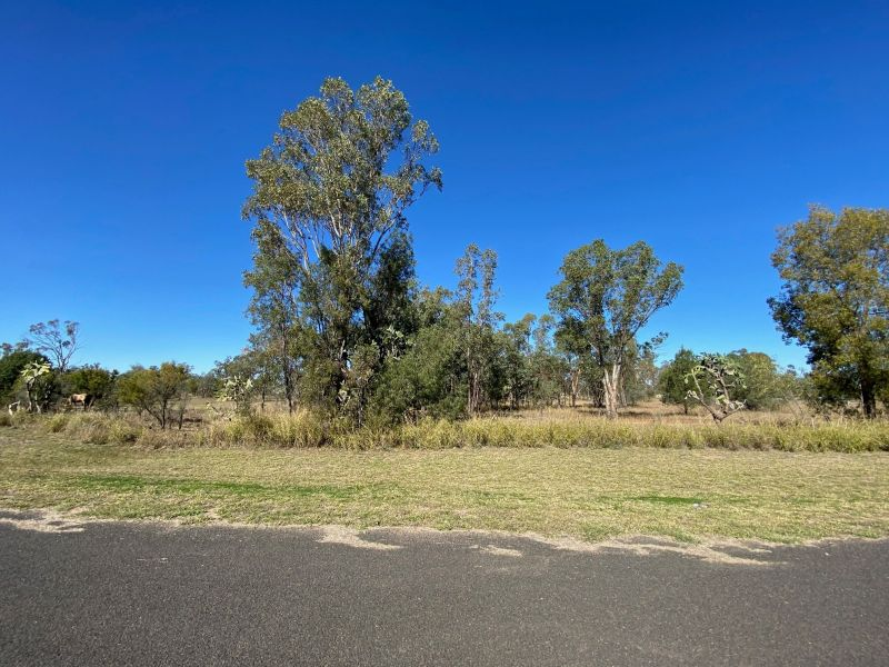COUNTRY LIVING - CONDAMINE