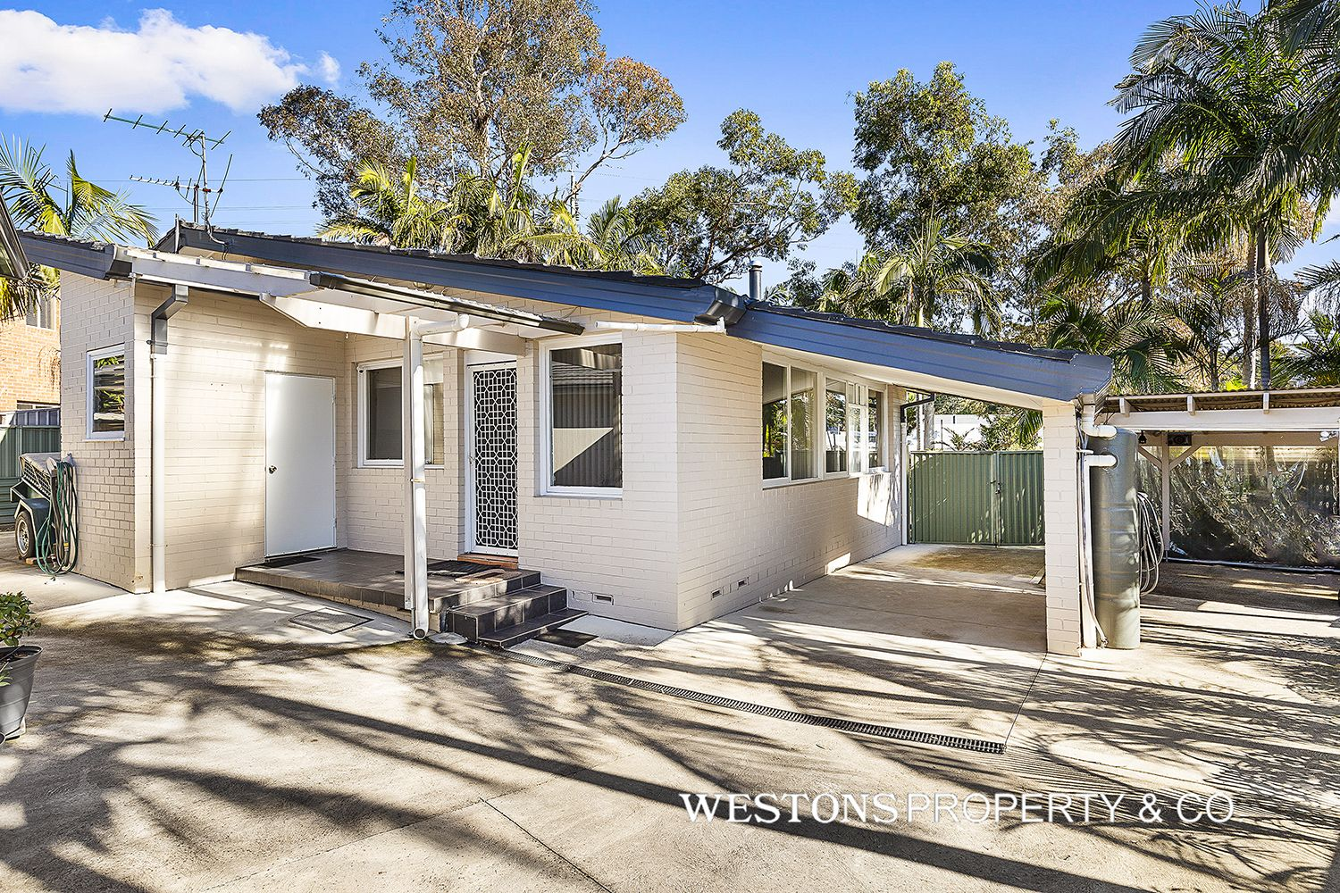 105 Oakes Road, Old Toongabbie NSW 2146