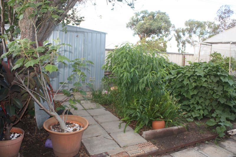 For Sale By Owner: 63 Avon Street, Katanning, WA 6317